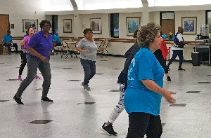 Seniors participating in an exercise class